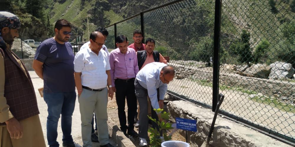 Plantation on World Environment Day